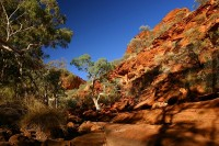 Watarrka (Kings Canyon) National Park II | Northern Territory | Australia