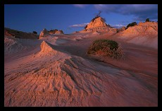 Sand Dunes | New South Wales | Australia